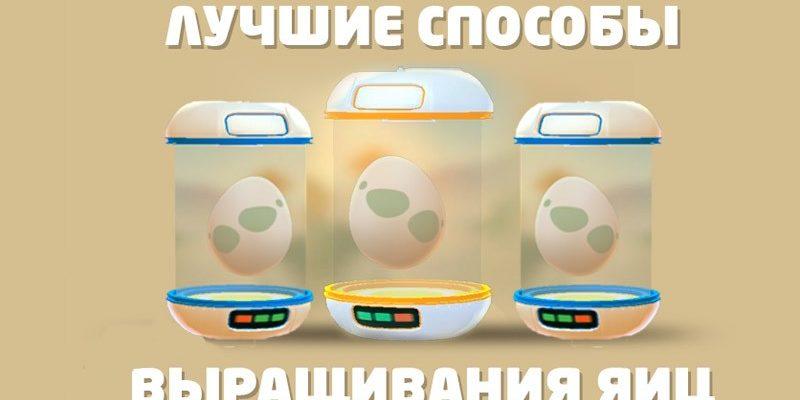 как быстро выращивать яйца в Pokemon Go, Лучшие способы