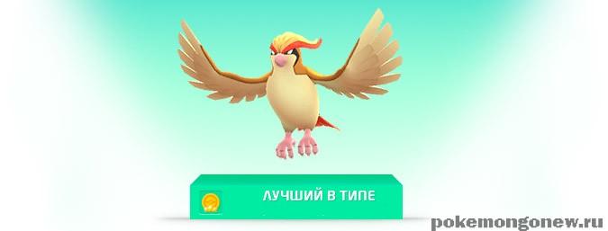 Сильнейший покемон Летающего типа: Pidgeot