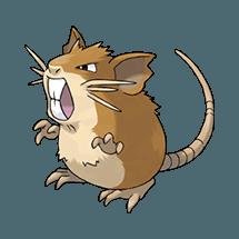 Рэтикейт (Raticate)