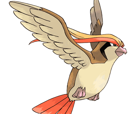 Покемон Пиджит (Pidgeot) в Pokemon Go / Покемон Го