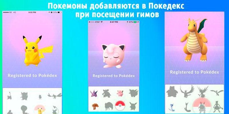 Покемоны добавляются в покедекс при посещении гимов