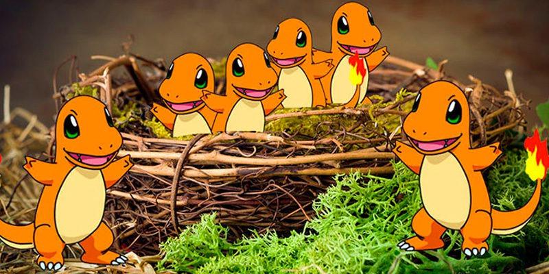 11 миграция гнезд в Покемон ГО / Pokemon GO